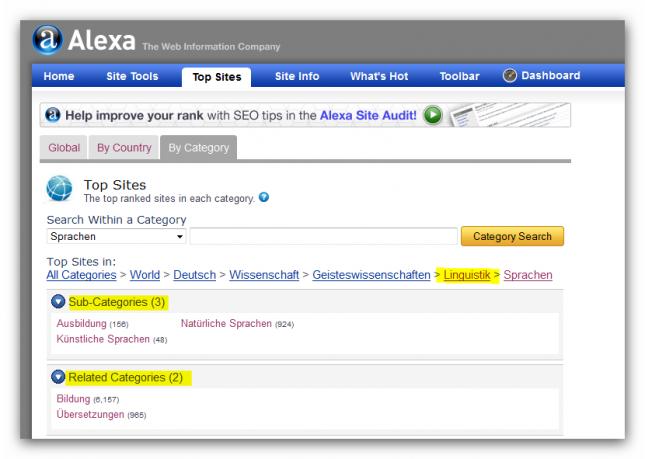 Nischenseiten-Challenge Alexa Kategorien